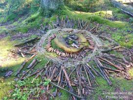 Kunst im Wald_www.wald-wirkt.de